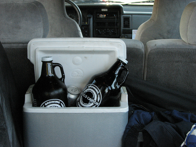 Beers That Travel Well in Growlers on Long Road Trips